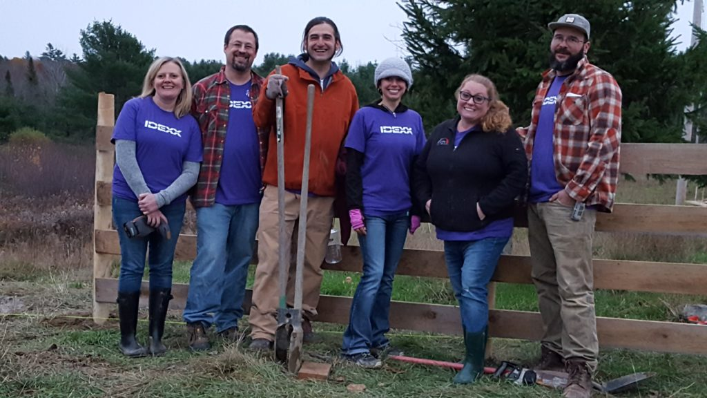 Volunteers from IDEXX at Graze in Peace Farm Animal Rescue and Learning Center