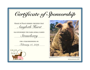 Strawberry Sponsorship Certificate at Graze in Peace Farm Animal Sanctuary in Maine